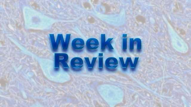 This Week on NeuroScientistNews: 9 March – 13 March