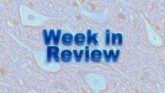 This Week on NeuroScientistNews: 12-16 October