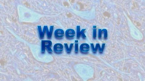 This Week on NeuroScientistNews: 31 August – 4 September