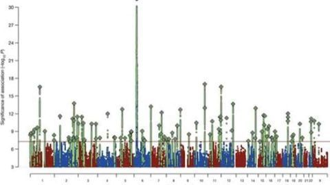 Schizophrenia's strongest known genetic risk deconstructed