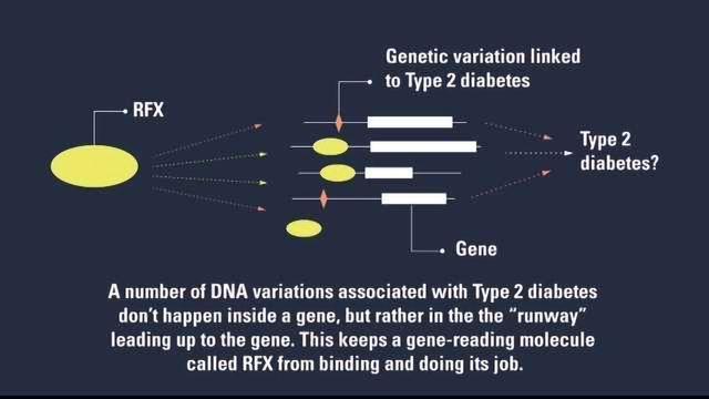 Is Diabetes in Your DNA?