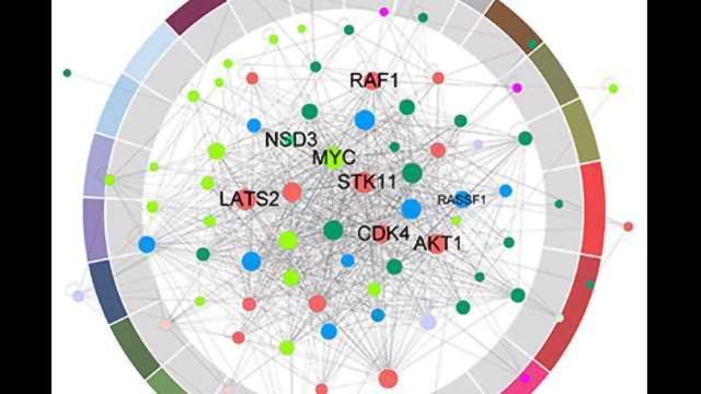 New Ways to Target Cells Carrying Mutations in Cancer-Causing Genes