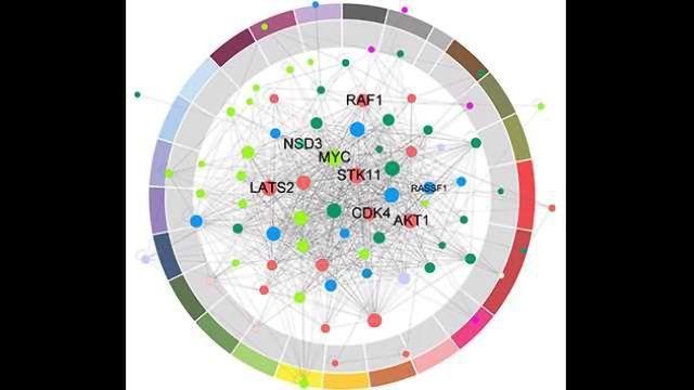 Revealing New Cancer Drug Targets