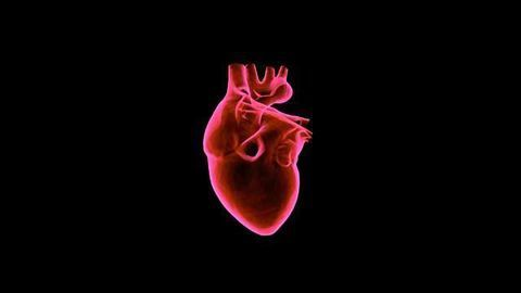 New Peptide Could Combat the Cause of Familial Hypercholesterolemia