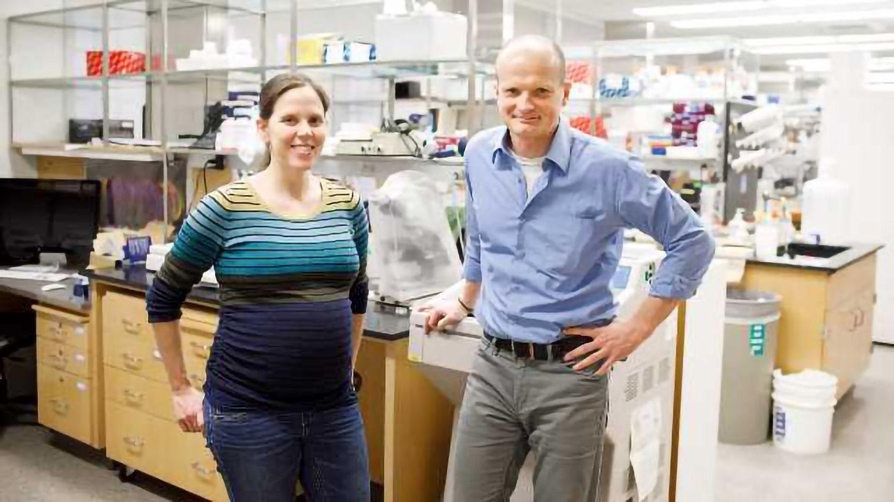 Meet Doublesex, the Sex Characteristics Gene