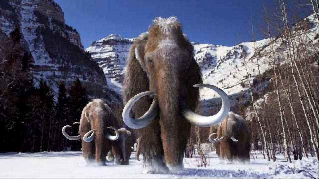 Woolly Mammoths had a Mutational Meltdown Before Extinction