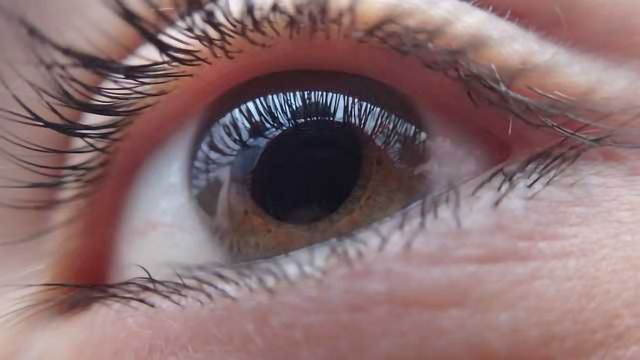 Key Protein Fights Blindness