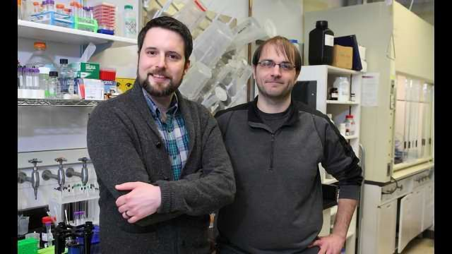 Chicago Academic Chemists Win NSF Career Awards