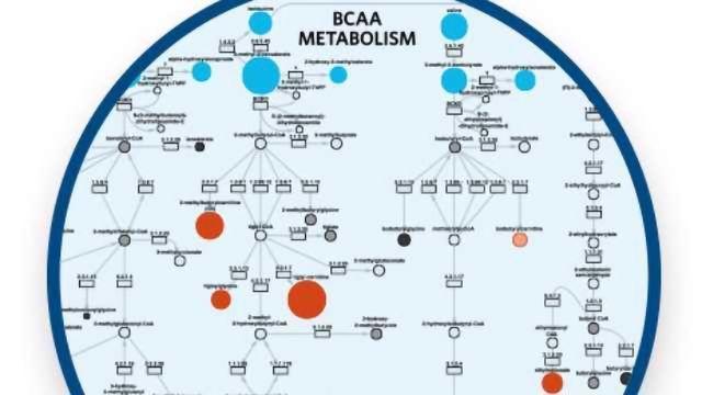 Overcoming Challenges of Metabolomics