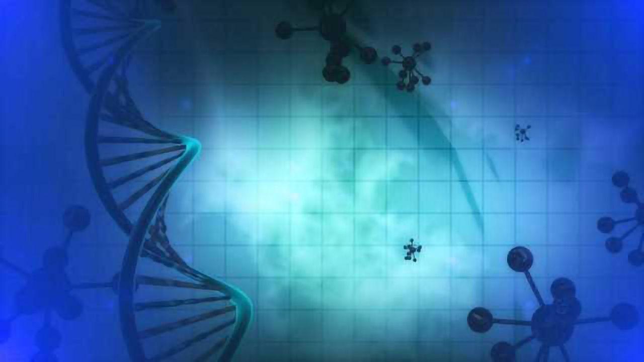 Self-Assembled 3D DNA Crystals