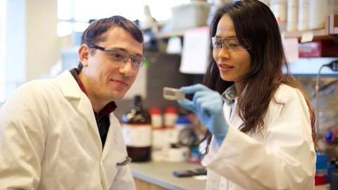 Detecting DNA Damage from Carcinogenic Fungi