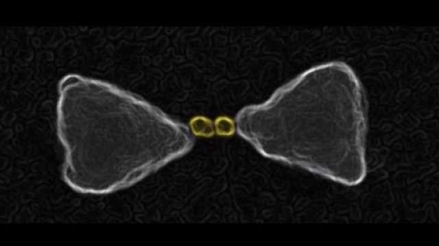 Nano 'Bow-Tie' Photocatalyst Developed