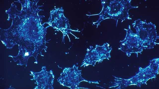 Death Mechanism Self-eradicates Duplicating Cancer Cells