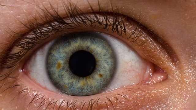 3 Genes Linked to Progressively Blinding Eye Disease