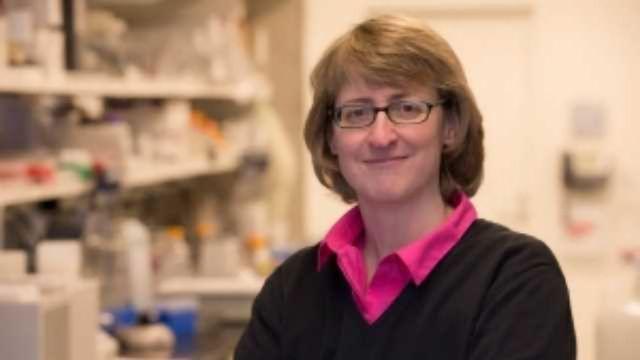 Proteomics Used to Target Tumours