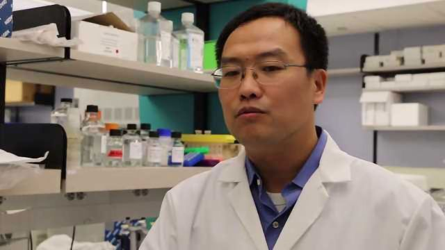 Exploiting the Tumor Microenvironment to Enhance Cancer Treatment