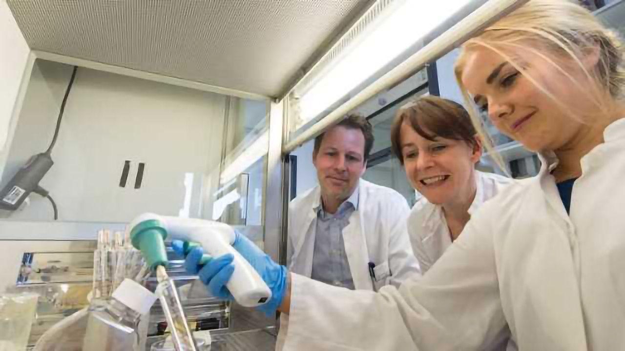 'Mini Brains' Developed to Study Miller-Dieker Syndrome