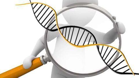 New Biotransformation Solutions for Metabolism and Biologic Catabolism Studies