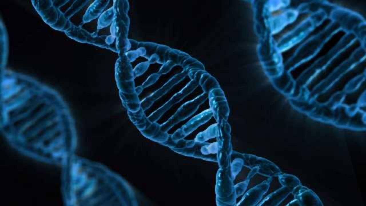 Breaking the Protein-DNA Bond