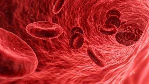 Blood Test Detects Head Trauma