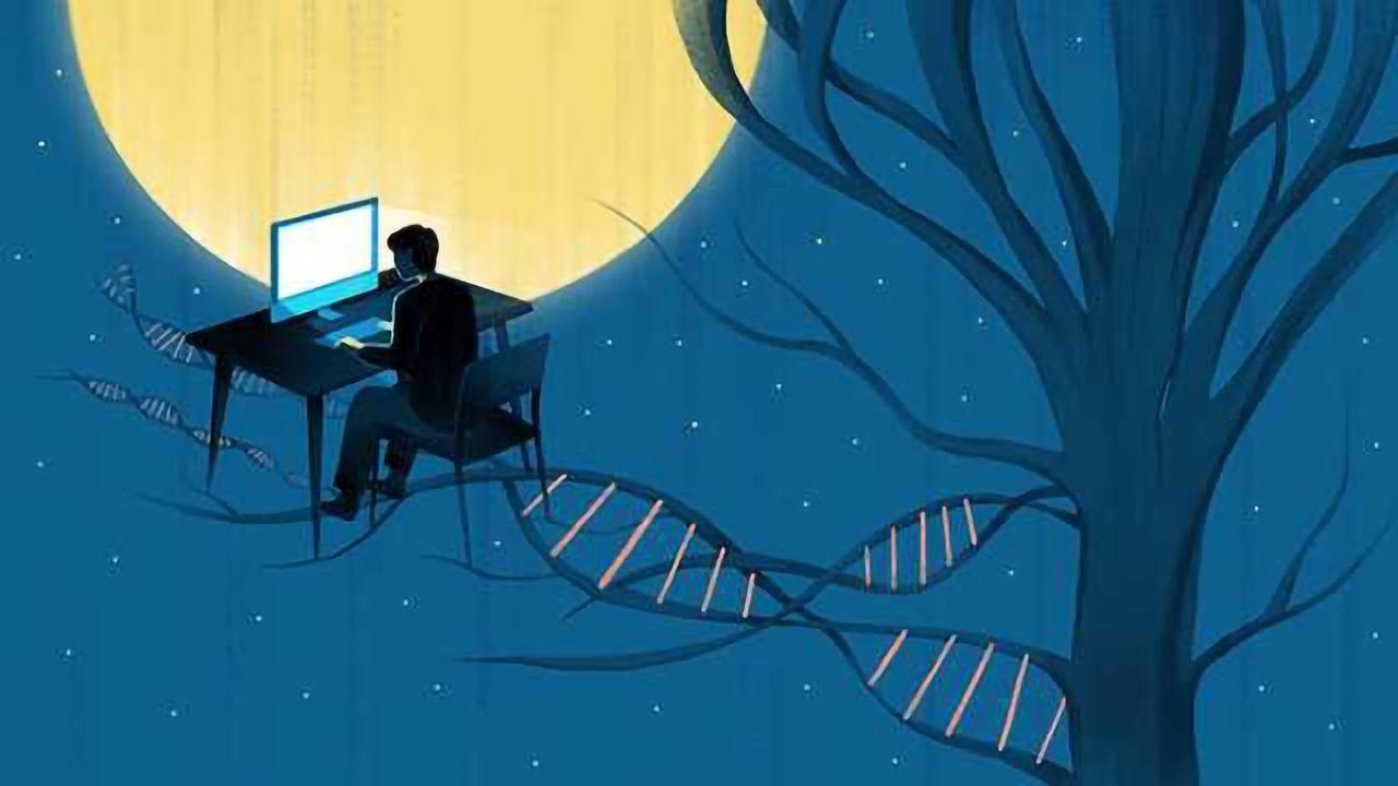 Night Owls, We've Found the Gene that Keeps You Awake at Night