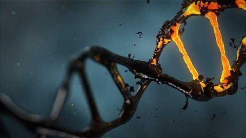 Where Do New Genes Come From?