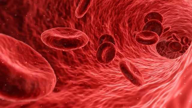 Blood Cancer Study Posts Outstanding Results