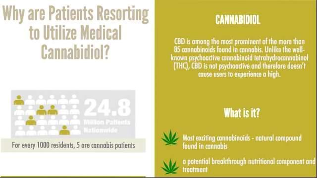 Why are Patients Resorting to Medical Cannabidiol?