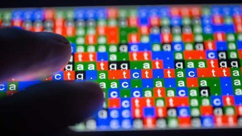 Whole Genome Sequencing for a Safer Food Supply