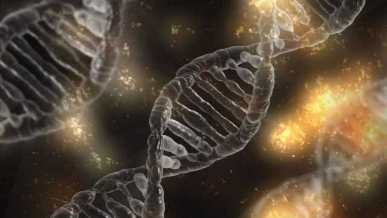 Lab-on-a-Chip Can Stretch DNA to Help Detect Disease