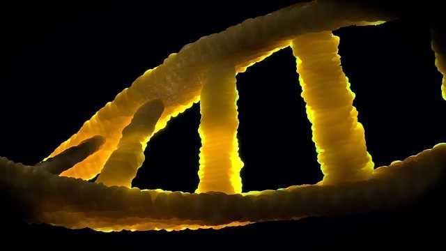 Novel Gene Variant Linked to ALS