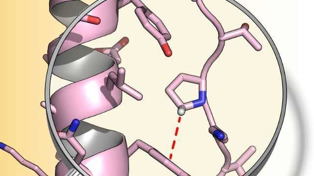 Engineering Protein Stability with Atomic Precision