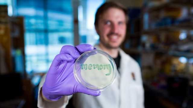Bacterial Sensor Can Record Gut Inflammation for Six Months