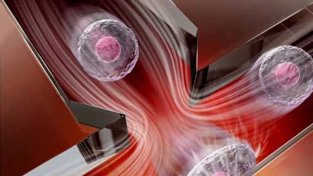 New and Practical Method to Measure Cell Stiffness Developed