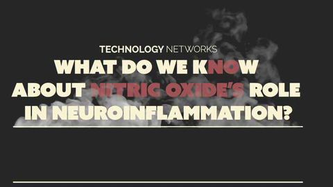 What do we KNOw About Nitric Oxide's Role in Neuroinflammation
