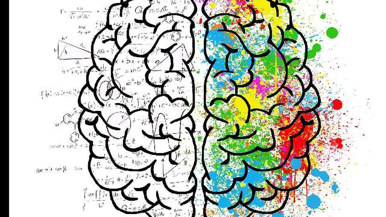Algorithm Reads Your Mind to Interpret Brain Representation of Faces