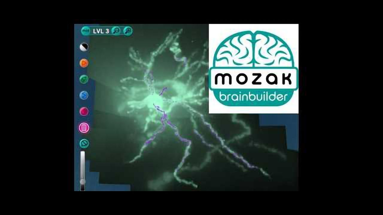 New Computer Game to Map the Brain