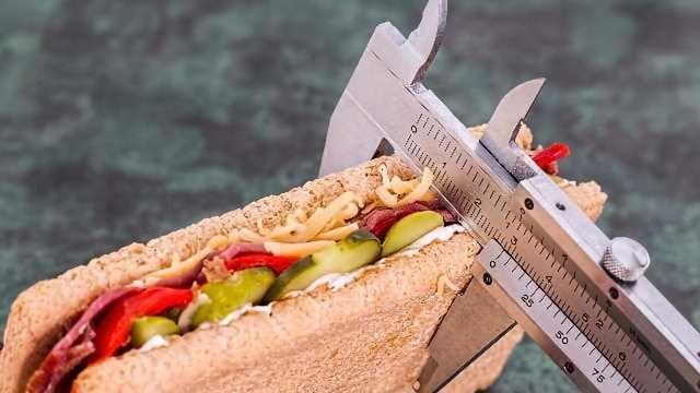 Novel Imaging Method Reveals New Food-Seeking Circuitry