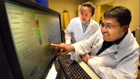 Cells Key to Blood Vessel Formation Can Also Produce Tumors