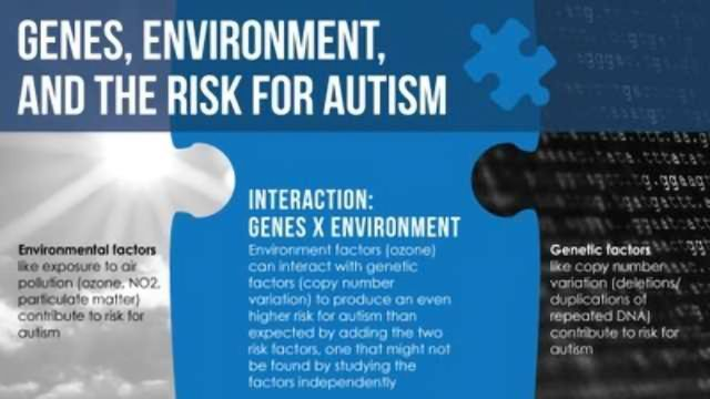 Genetic Variation, Ozone Combine to Increase Autism Risk