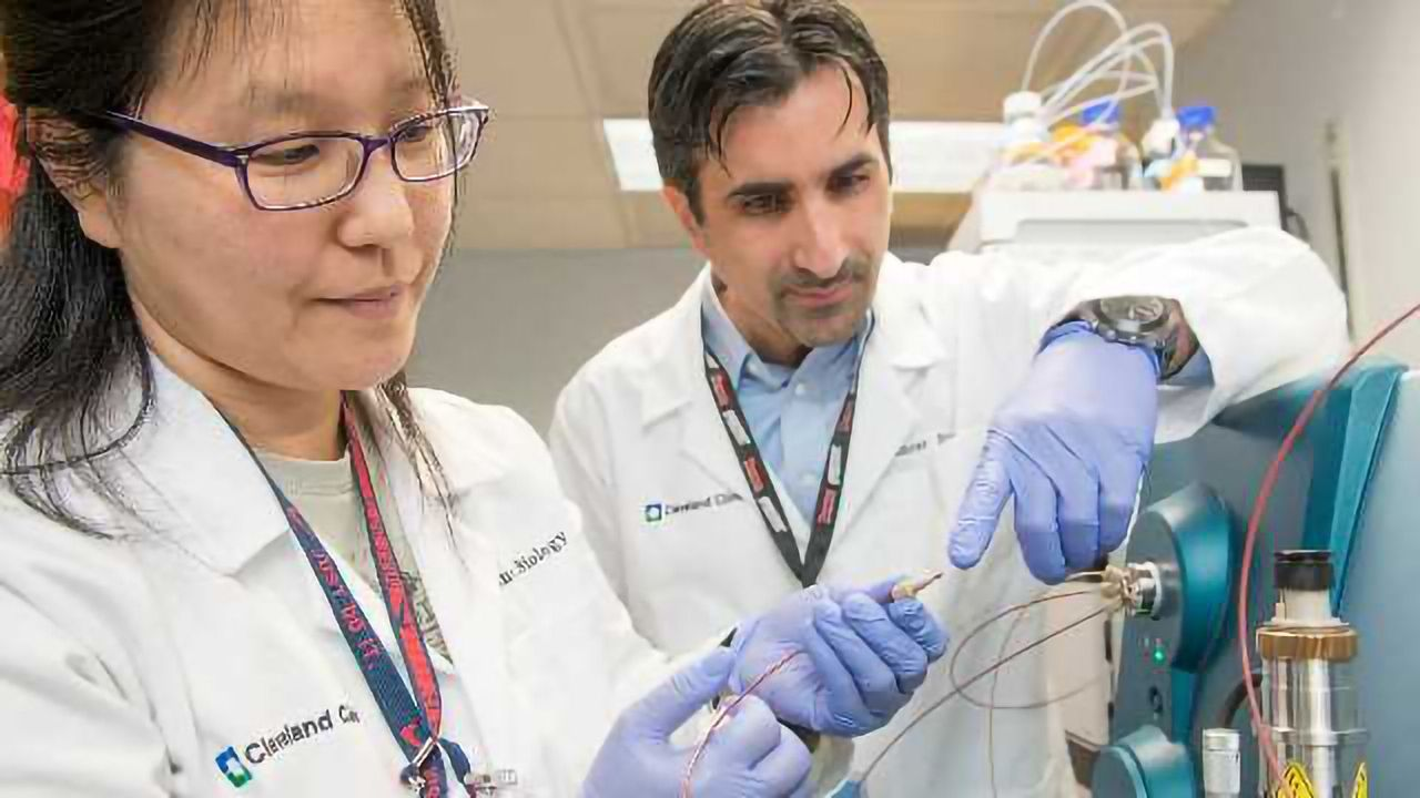 Advanced Cancer Drug Study Highlights Need for Novel Approaches