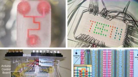 Microfluidics for the Masses