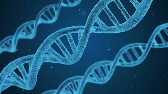 Illumina Announces Next-Generation Sequencing Cancer Companion Diagnostic Test Kit