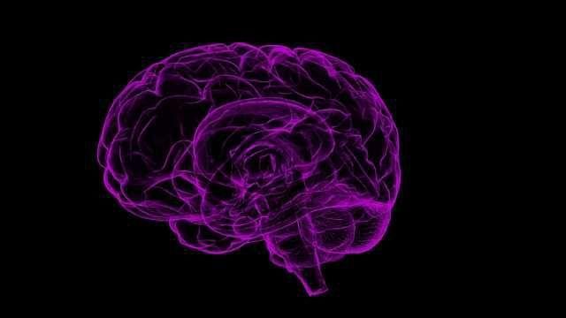 Genes Identified that Play Role in Alzheimer's, Glioblastoma Comorbidity