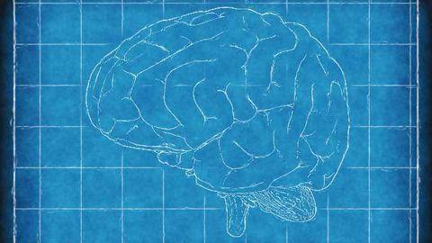 Biopolar Biomarkers May Differ Between Men and Women