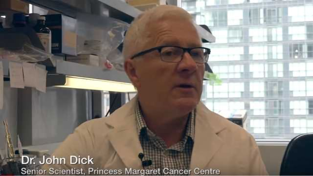 Stem Cell Researchers Solve Mystery of Relapse in AML
