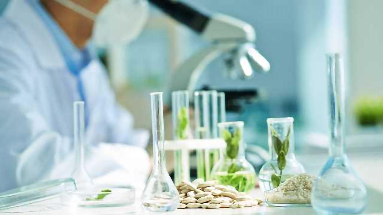 Plant Epigenetics: An untapped molecular resource for crop improvement