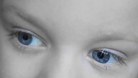 Visual Blueprints Present From Birth