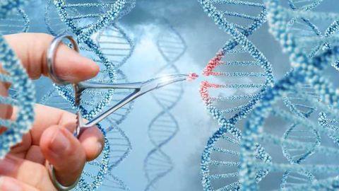 Improving Cells through Gene Editing