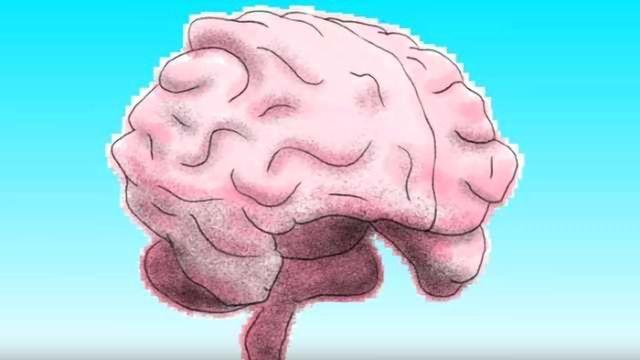 The left brain vs. right brain myth